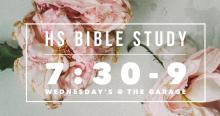 HS Bible Study